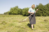 The old woman with a rake — Stock Photo