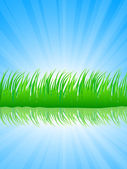 Lush grass. — Stock Vector