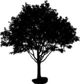 Tree silhouette — Vector de stock