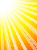 Sun. — Stock Vector