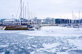 Harbour in the winter — Stock Photo