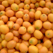 Stock Photo: FARMERS MARKET KUMQUATS