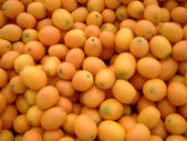 FARMERS MARKET KUMQUATS — Stock Photo