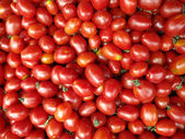 Red Grape Tomatoes — Stock Photo