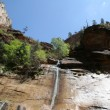 Zion Narrows — Stock Photo