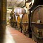 ������, ������: Argentina Wine Cellar