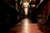 Cellar of Wine — Stock Photo