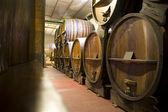 Argentina Wine Cellar — Stock Photo