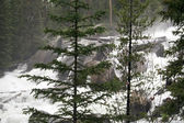 Crazy Creek - Wyoming — Stock Photo