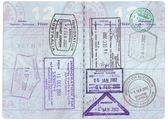 American Passport — Stock Photo