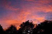 Autumn sunset in Montana. — Stock Photo