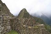 Machu Picchu antik kalıntılar — Stok fotoğraf