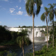 Argentina&#039;s Iguazu Falls - Stock Photo