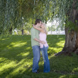 Stock Photo: Kissing Tree