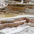Geyser at Mammoth Hot Springs — Stock Photo