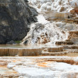 Geyser at Mammoth Hot Springs. — Stock Photo