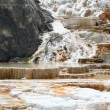 Geyser at Mammoth Hot Springs. — Stock Photo #2803633