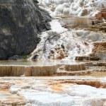 Geyser at Mammoth Hot Springs. — Stock Photo #2803633