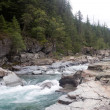 McDonald Creek in Glacier National Park — 图库照片