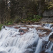 Virginia Falls, Glacier National Park — Stock Photo