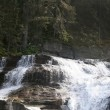 Stock Photo: VirginiFalls, Glacier National Park