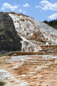 Geyser at Mammoth Hot Springs. — Zdjęcie stockowe