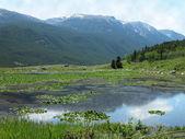 Reeves Lake, Montana — Stock Photo