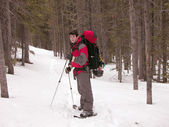 Snowshoeing - Montana — Stock Photo