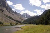 Whitetail Peak - Montana — Stock Photo