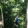 Stock Photo: JamaicCanopy Tour