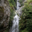Stock Photo: Benkar Waterfall - Nepal