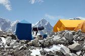 Everest Base Camp — Стоковое фото