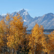 Grand Teton Mountains — Stock Photo