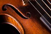 Beautiful old violin — Stock Photo