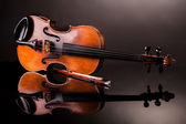Beautiful old violin — Stock Photo