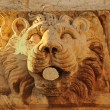 Stone lion head — Stock Photo #2762684