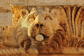 Stone lion head — Stockfoto