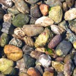 Rocks Under OceWater — Stock Photo #3523156