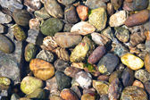 Rocks Under Ocean Water — Stock Photo