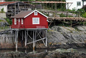 Red house in harbour — Stock Photo