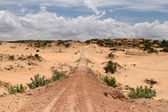 Dusty road in desert — Stock Photo