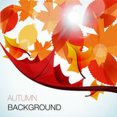 Abstract autumn vector background — Stockvektor