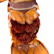 Crayfish tail — Stock Photo