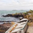 Stock Photo: Dinghy on Rangitoto Island 02