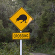 Kiwi Crossing — Stock Photo