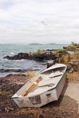 Dinghy on Rangitoto Island 02 — Stock Photo