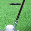 Putter — Stock Photo #2744062