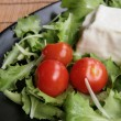 Royalty-Free Stock Photo: Stracchino with lettuce and tomatoes