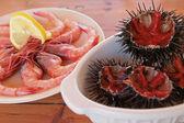 Sea urchins & shrimps — Stock Photo