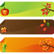 Autumn vector banners — Stock Vector